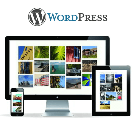Wordpress Theme Designing Services