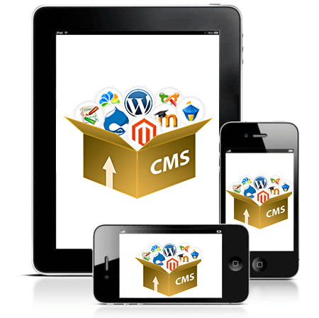CMS Website Development in Singapore
